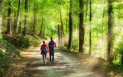 7x tips bij een lange wandeling